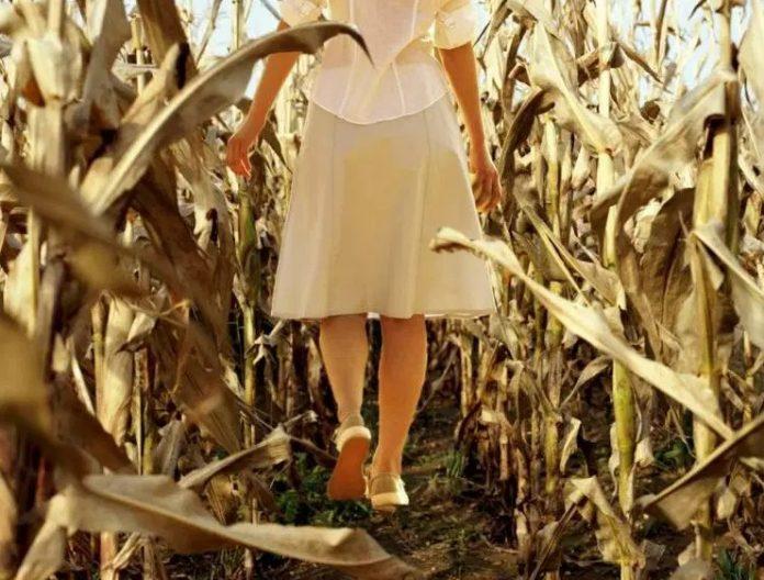 Pengobatan Alternatif terhadap Gangguan Menstruasi pada Wanita
