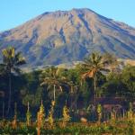 Jalur Gunung Sumbing yang Eksotis Nan Tinggi di Jawa