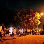 Wisata Malam Alun-alun Kidul Jogja