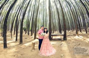 Hutan Pinus Imogiri, Lokasi Foto Prewedding Gratis di Jogja
