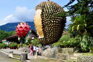 Daftar Obyek Wisata Cantik di Bogor