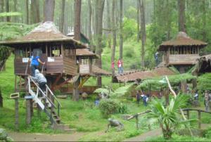 Lokasi Tempat Wisata Rumah Pohon Jetiasih Bekasi